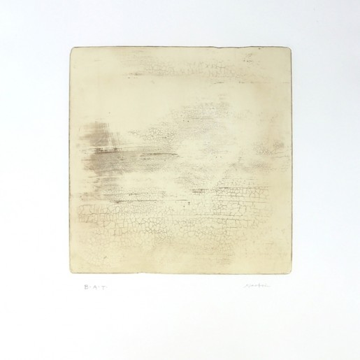 Xiaobai Su, Intactness-C, 2015