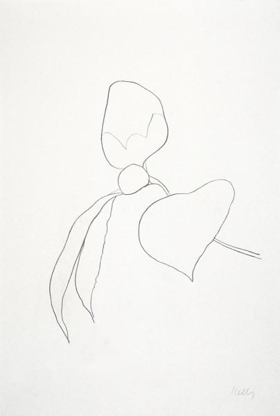 Ellsworth Kelly, Camellia I, 1964-65