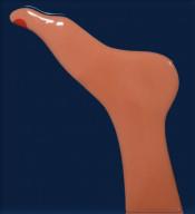Seascape (foot)