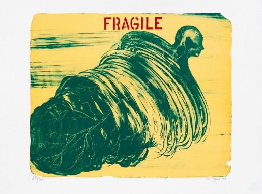 Barthélémy Toguo, Fragile, 2009