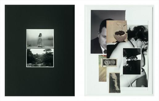 Leigh Ledare, Double Bind, 2012