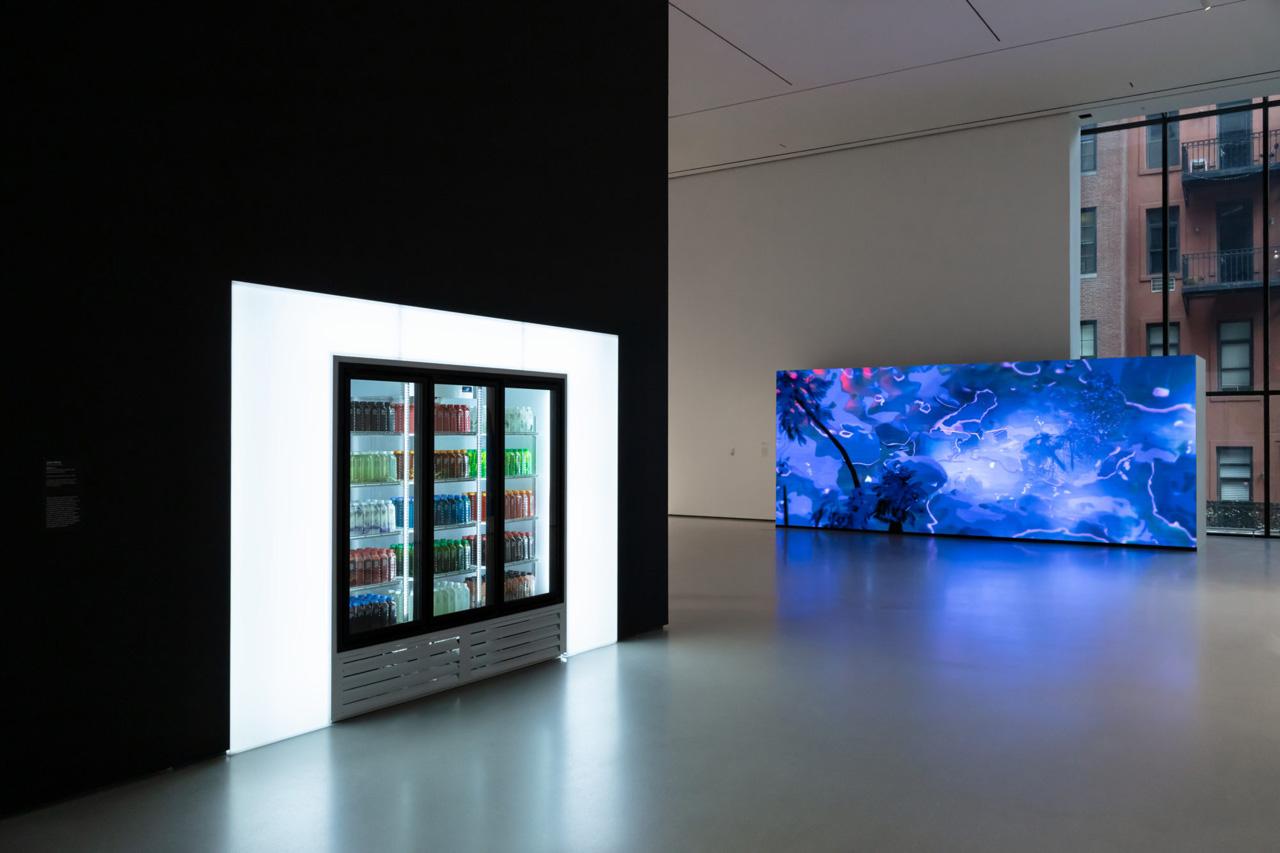 Installation view, New Order: Art and Technology in the Twenty-First Century at The Museum of Modern Art, New York. Digital image © 2019 The Museum of Modern Art, New York. Photo: Jonathan Muzikar