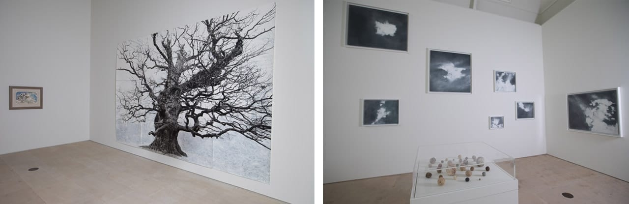 Gallery views of the Tacita Dean: LANDSCAPE exhibition at the Royal Academy of Arts, London. Artworks: Courtesy the artist, Frith Street Gallery, London & Marian Goodman Gallery, New York/Paris. Images: David Parry. © David Parry